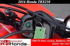2016 Honda TRX250 X