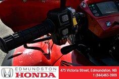 2017 Honda TRX680FA Rincon