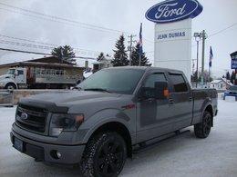 Ford F-150 FX4-FX  2013
