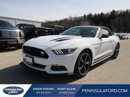 2016 Ford Mustang GT Premium  CALIFORNIA SPECIAL, WOW!!!