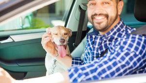 Cinq dépenses à considérer au moment d'acheter votre véhicule d'occasion