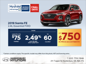 Get the 2019 Sante Fe today!