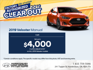 Get the 2019 Veloster!