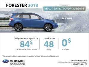 Louez la Forester 2018!