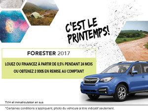 Louez le Subaru Forester 2017