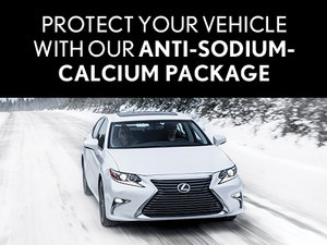 Protect Your Vehicle With Anti-Sodium-Calcium Package