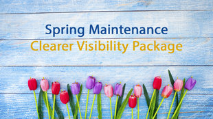 Spring Maintenance - Visibility Package