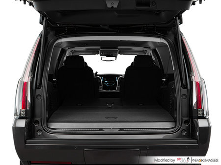 Cadillac Escalade ESV BASE Escalade ESV 2018 - photo 2