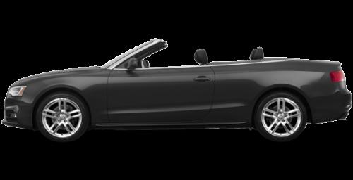 Daytona Grey Pearl