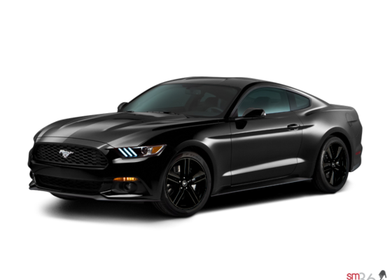 2015 ford mustang ecoboost premium in montreal near brossard and chateauguay lasalle ford. Black Bedroom Furniture Sets. Home Design Ideas