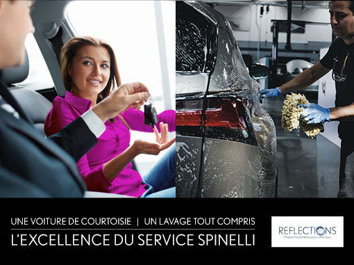L'excellence du service Spinelli