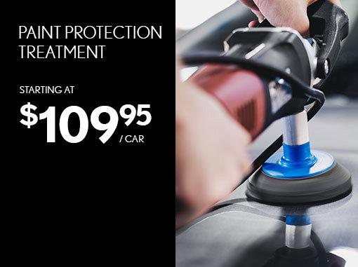 Paint Protection Treatment