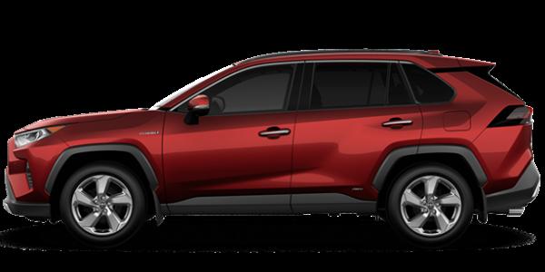 2019  RAV4 Hybrid