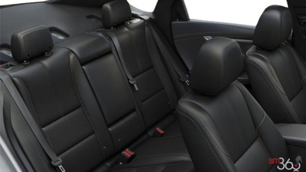 Jet Black Perforated Leather (HOY-A51)