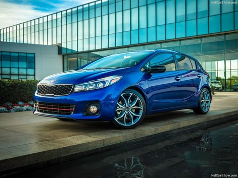 Five Kia Vehicles that Stand Out When It Comes to Interior Space