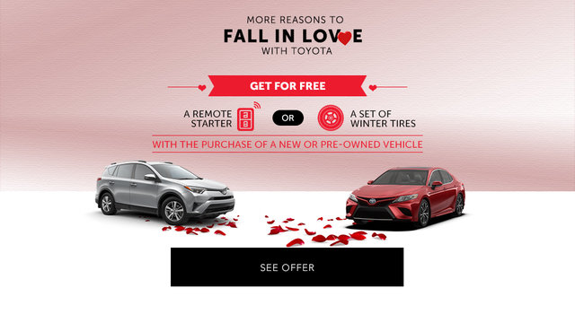 Fall in Love with Toyota (mobile)