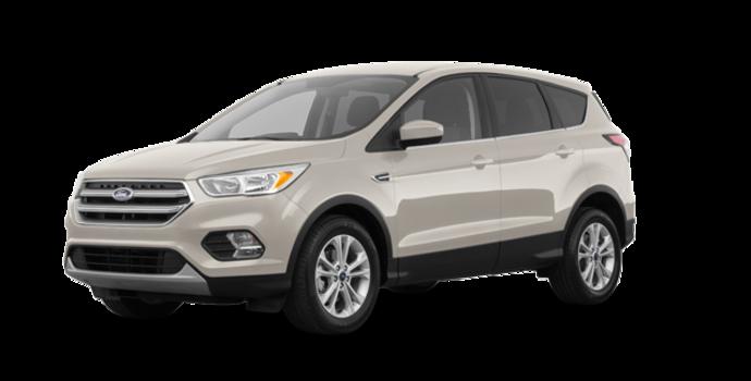 2018 Ford Escape SE | Photo 6 | White Gold