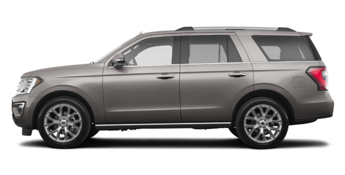 2018 Ford Expedition LIMITED | Photo 4 | Stone Grey