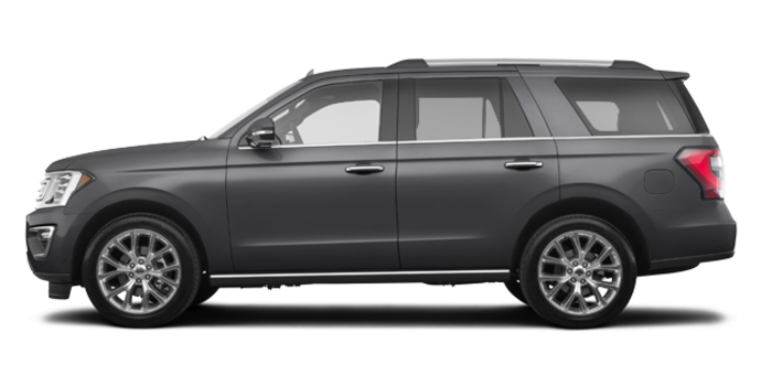 2018 Ford Expedition LIMITED | Photo 4 | Magnetic Metallic