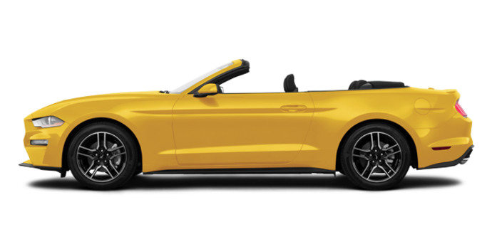 2018 Ford Mustang Convertible EcoBoost | Photo 4 | Triple Yellow Tri-Coat