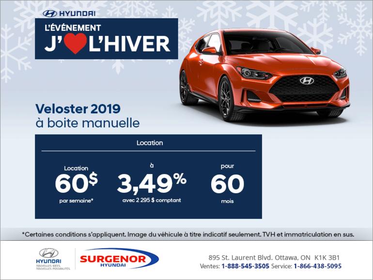 Louez la Veloster 2019!